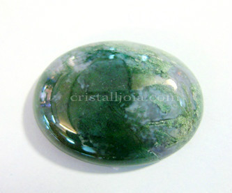 Moss Agate cabochon 18x25mm